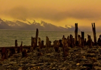 The remnants of the 1940's U.S.Army dock still stand from the tsunami created from the 1964 earthquake that hit Seward.