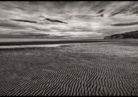 Ocean Dunes