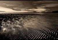 Ocean  Symmetry