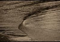 Ocean Textures (Ripples)