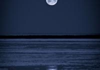 Winter Moon